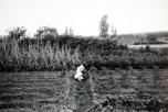 Archivo fotografico cam
