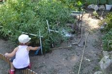 ayudando en el huerto