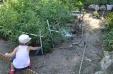 Regando el huerto